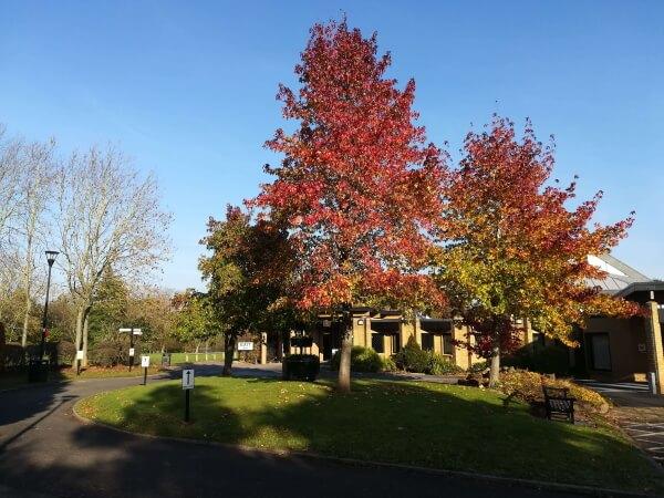 Trees outside the Serenity Chapel Bramcote Crematorium